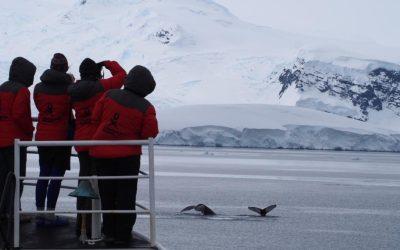 Antarctica, we love you