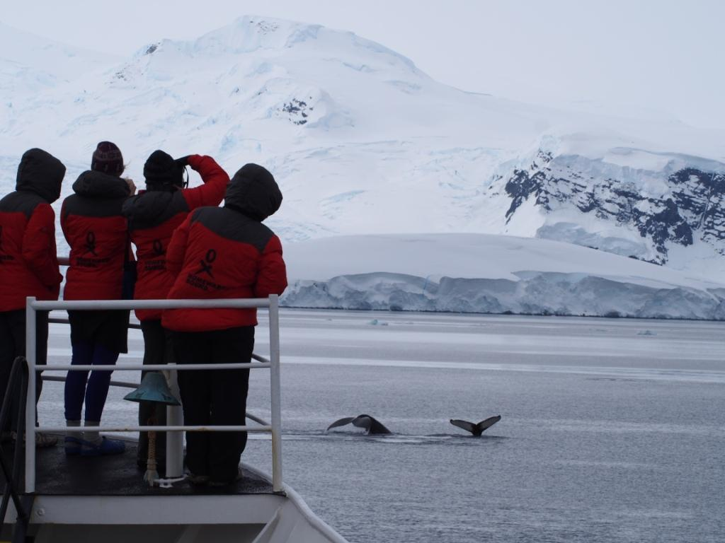Antarctica, we love you